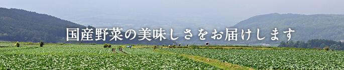 国産野菜の美味しさをお届けします
