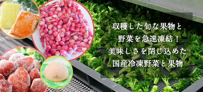 収穫した旬な野菜を急速凍結!美味しさを閉じ込めた国産冷凍野菜
