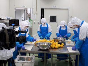 レモン丸ごとピューレも自社工場で製造します